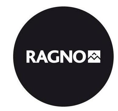 Immagine RAGNO
